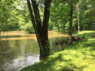 a creek 1