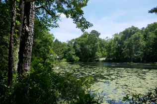 lake abor