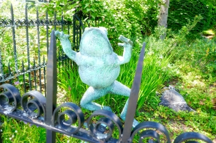 a b frog_HDR