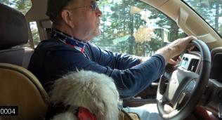 roy driving miss linda